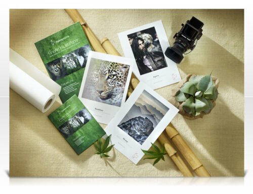 Fine Art Papers that are Earth Friendly Papers.